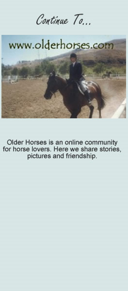 Continue to the Older Horses Web Site